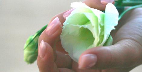 Bluete mit Fingernaegeln Stuttgart Nagelstudio. Ein Hauch von Porcellan Naturnagelschutz in zart Rosa lackiert mit Bluete. Eine echte Chance fuer Nagelkauer mit der Naturnagel Behandlung mit Langzeit Pflege.