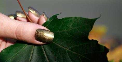 Nagelstudio Herbsttrend, ein Fingernagel mit olive farbenen Nagellack. Naturnagel mit extra light Beschichtung, nur im Nagelstudio in Stuttgart. Die Luxus Nagelprodukt Vernis Prive lassen keine Wünsche offen.